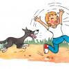 Ребенка укусила собака, что делать