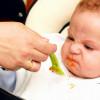 Как научить ребенка жевать