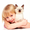 Самооценка у детей дошкольного возраста
