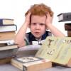 Синдром отличника у ребенка