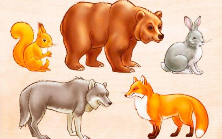 Викторина о животных с ответами