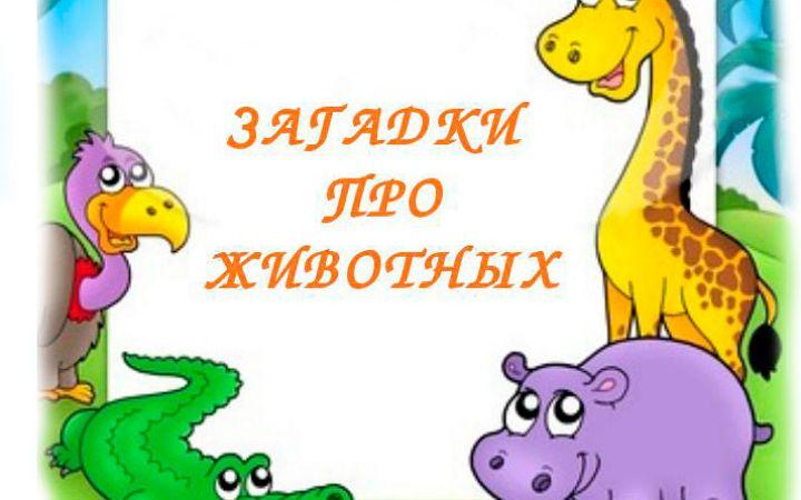 Загадки про животных для детей
