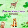 Викторина дикие животные для 6-9 лет