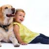 Как проявляется аллергия на кошек и собак у детей