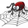 Почему нельзя убивать пауков