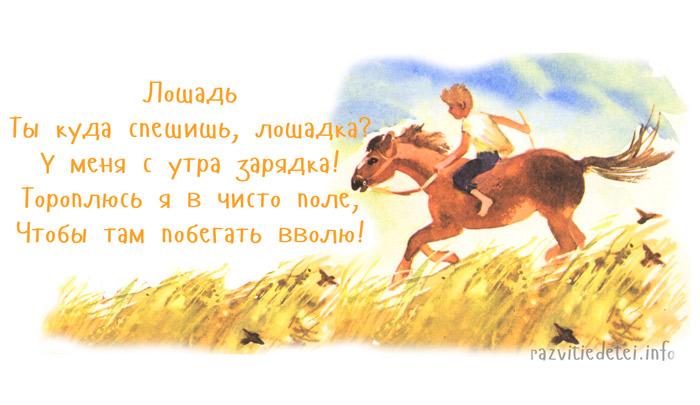 На лошадке я катался стих