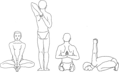 Какие упражнения от сутулости