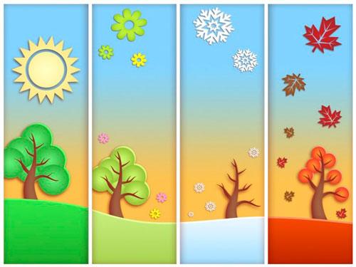 пересадка цветов в сезон