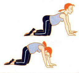 gimnastika-beremnim