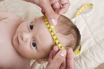 размер головы новорожденного