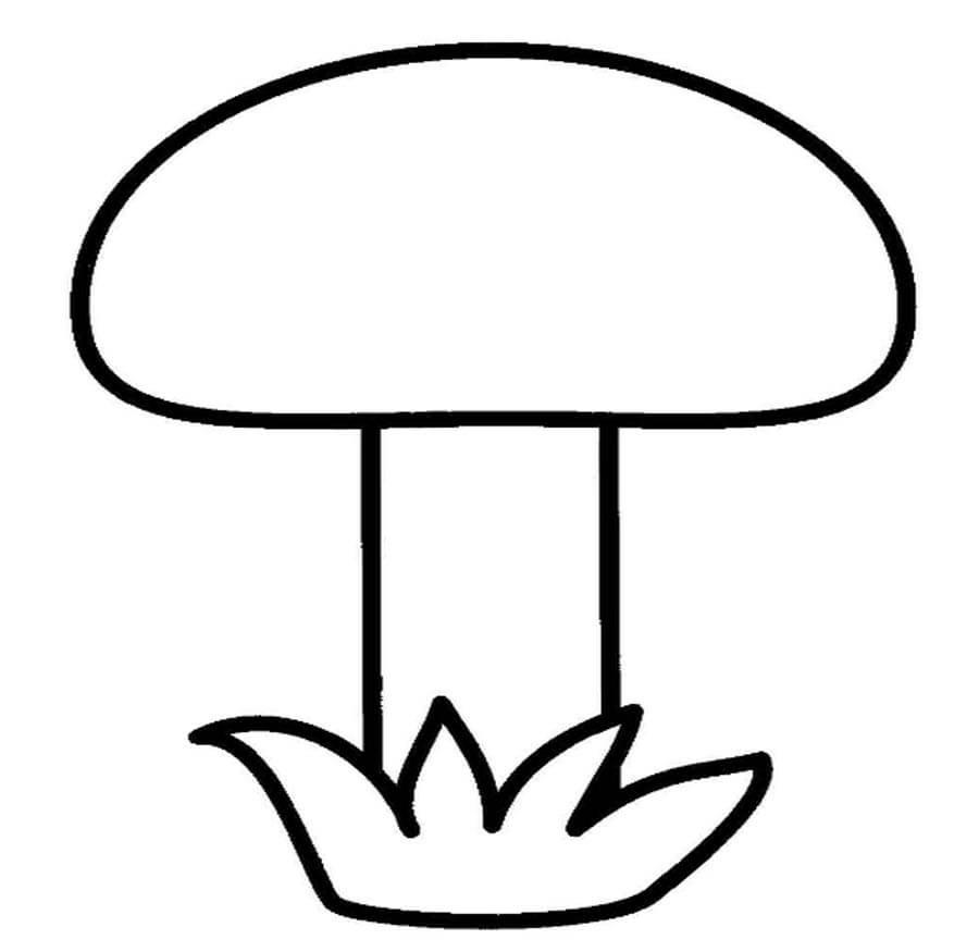 Рисунки для школьников раскраски